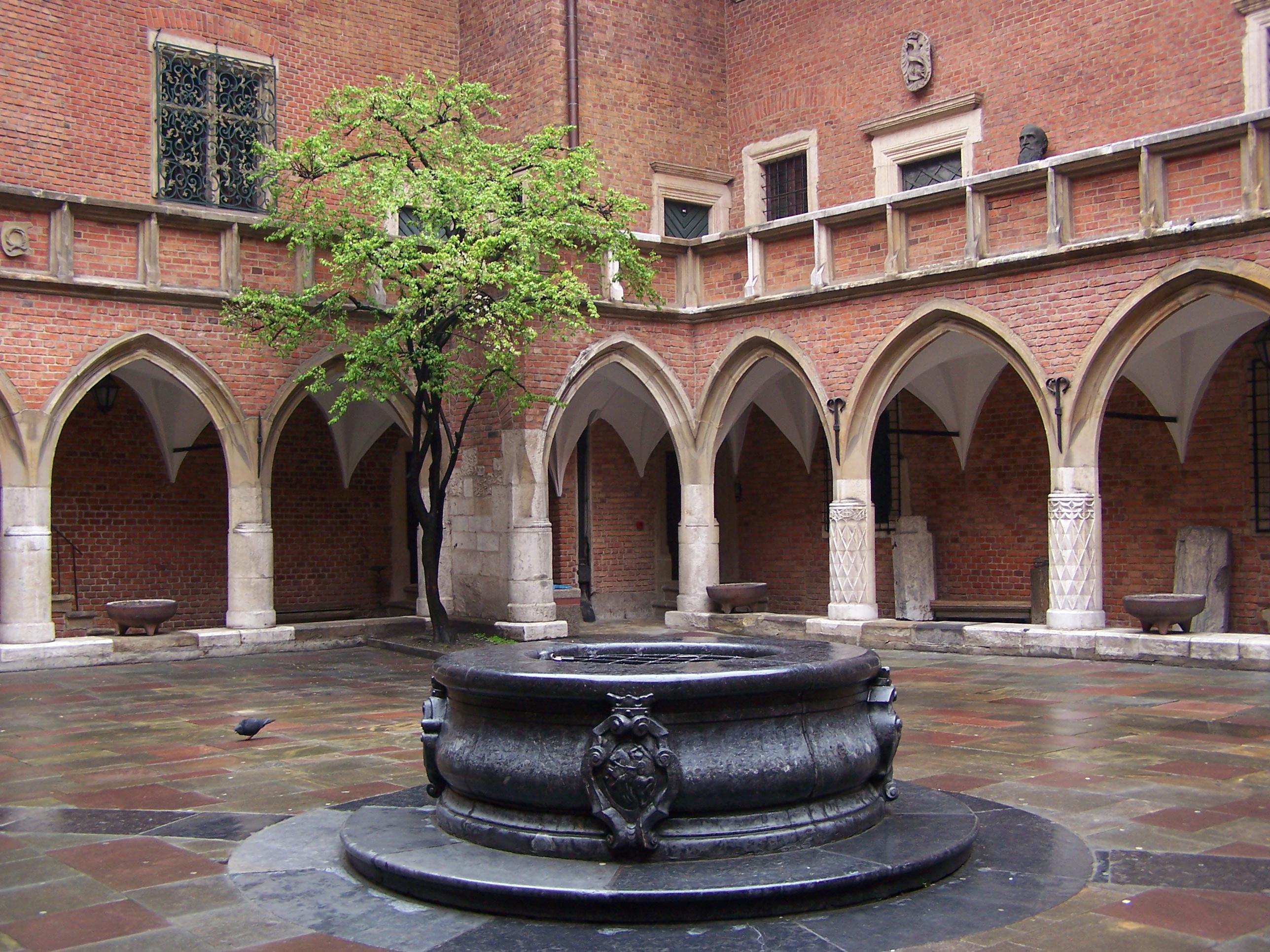 Kraków_-_Collegium_Maius_-_Dziedziniec_01