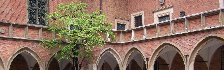 cropped-Kraków_-_Collegium_Maius_-_Dziedziniec_011.jpg
